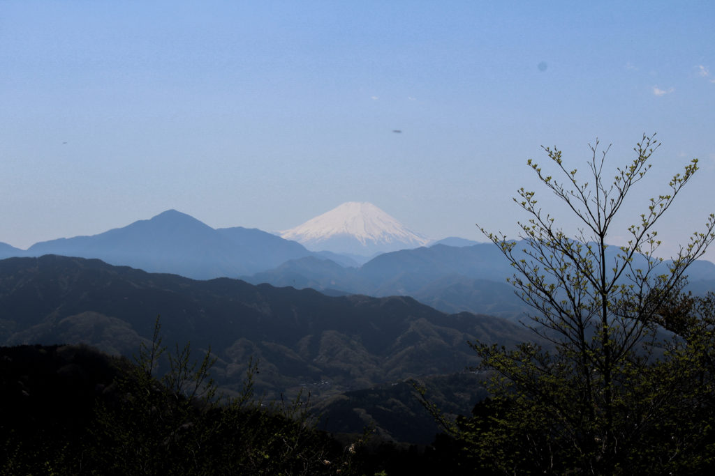 View of Mount Fuji from Mount Takao